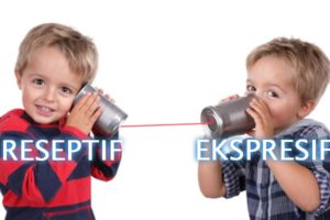 Pengertian-Bahasa-Reseptif-dan-Bahasa-Ekspresif
