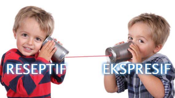 Pengertian Bahasa Reseptif dan Bahasa Ekspresif